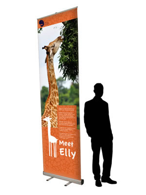 """Rollup-Display """"Giant"""" inkl. Bannerdruck"""